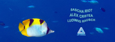 Dieses Bild zeigt den Flyer des Events TRIP TO BERMUDA